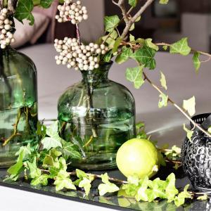 Foto met planten in glazen potten